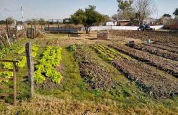 Actividades de la Delegación de Agricultura Familiar