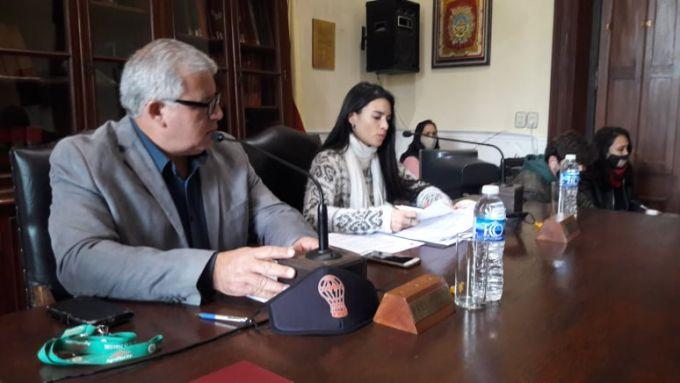 """El Concejo aprobó la adhesión a la ley """"Micaela"""""""